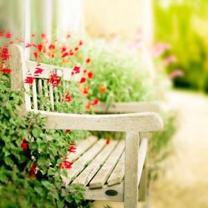 arregla el jardin para vender casa